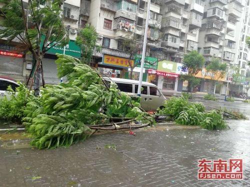 """强台风""""玛莉亚""""连江登陆 福州城区风雨交加"""