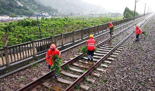 抗击台风 南铁福建段巡检线路设备迅速排除险情