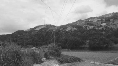 挖掘机扯断电线 南安柳城一对老夫妻犁田时触电
