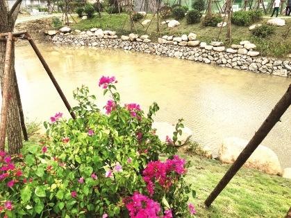 采用1公里自然缓坡型驳岸的台屿河公园