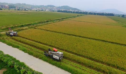 福清三华农场按照现代农场标准打造田园综合体系