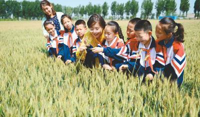 浪费惊人 中国食物浪费量每年1700万至1800万吨