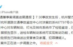 杭州闹市车祸鉴定结果出炉 车辆制动转向无异常 意味着什么