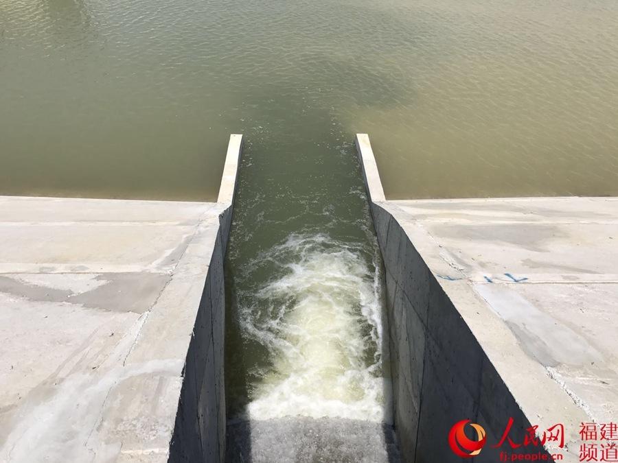 探访福建向金门供水水源地——晋江龙湖