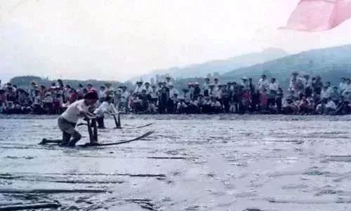 连江上央视了!这种