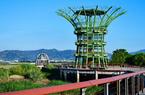 寻找福州塔礁洲公园里的城市湿地