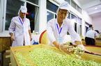 2018年福州茉莉花茶传统窨制工艺传承人、传承大师赛举行