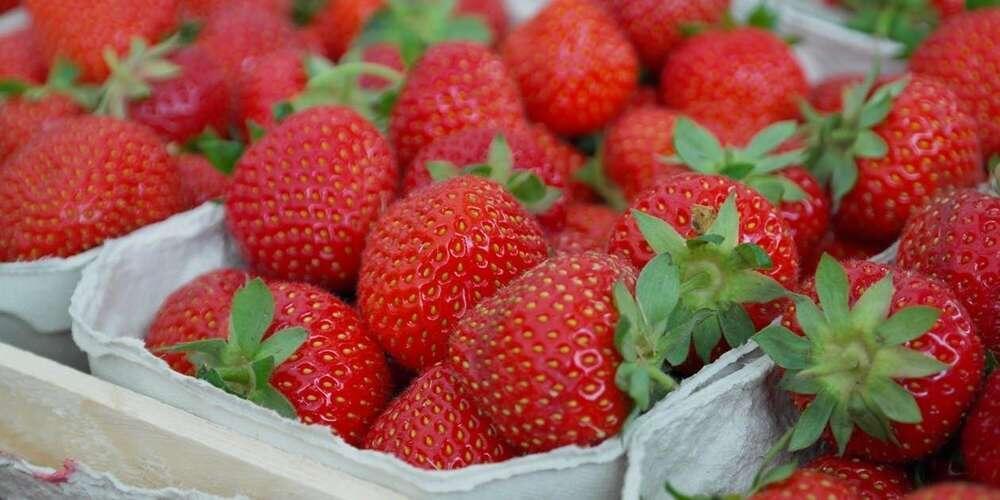 法国消费者调查:近7成民众不满超市水果品质