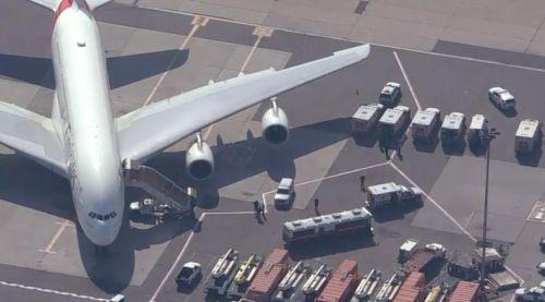 迪拜飞纽约客机上百乘客染病是传染病吗?阿联酋航空乘客染病事件始末