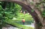 ca88亚洲城手机版【官方ca88亚洲城手机版下载】_ca88亚洲城手机版下载:构建内河水系生态修复链 提升河水自净能力