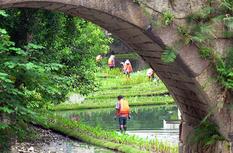 福州:构建内河水系生态修复链 提升河水自净能力
