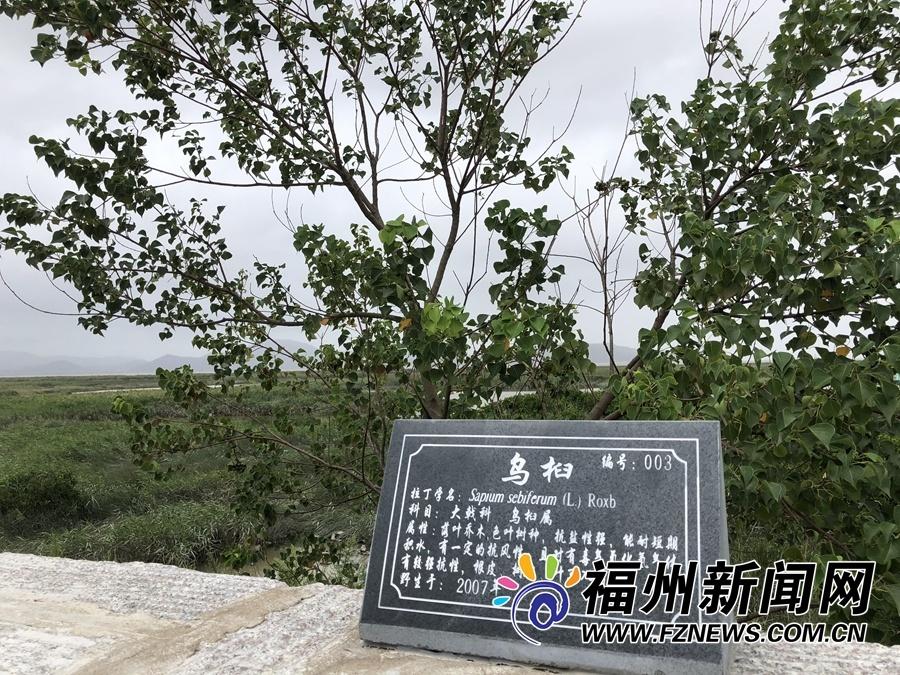 长乐闽江河口国家湿地公园呼之欲出