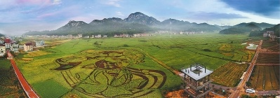 莆田:试点建设田园综合体 探路乡村振兴