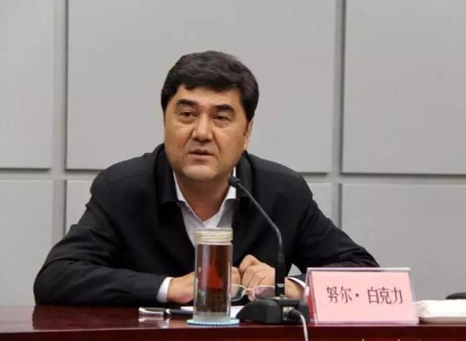 又一虎!国家发改委副主任,国家能源局局长努尔·白克力被查!