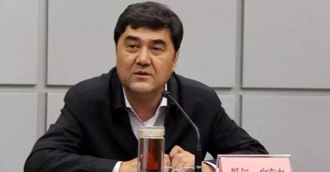 又一虎!國家發改委副主任,國家能源局局長努爾·白克力被查!