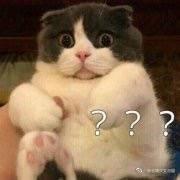 《好声音》总决赛华少胖的连脖子都没了,双下巴超厚是过节吃的吗