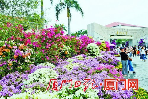 厦大周边三角绿地景观改造 街心交通岛变身小花园