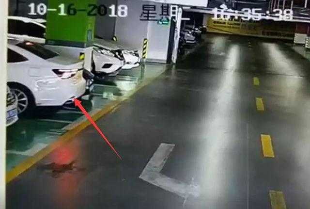 女司机倒车连撞多辆豪车视频回顾 女司机淡定停车报警【图】