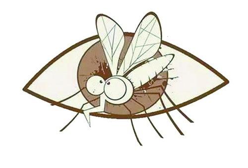 老感觉眼前 蚊子 飞舞是怎么回事 医生 应马上检查
