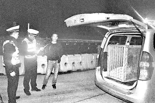 夫君用面包车载猛虎 到南平高速连闯关卡
