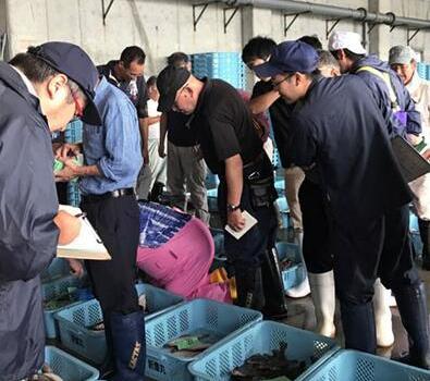 日本福岛渔民担心日趋加剧 核净化水不停倾倒大海
