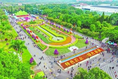 漳州花博會:不到園林,怎知花繁如許?