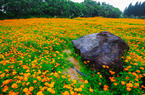 愛上福州城 | 回望福州這一秋的色彩