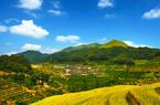平和澄溪村:创意带来不一样的乡村游