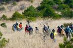 福建武夷山國家公園開展生態科考活動