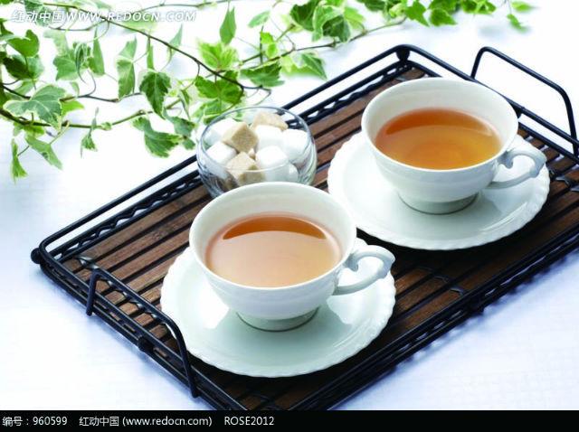 从茶园到茶杯 福鼎白茶全面实行质量可追溯体系