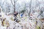 受强冷氛围影响 建宁县岩上村构成冰挂异景