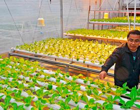 """从靠天吃饭到靠科技掘金 福州农业越来越""""聪明"""""""