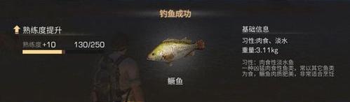 明日之后鳜鱼在哪钓位置分享 明日之后烤鳜鱼有什么用?