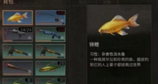 明日之后大全钓钓明日之后做法香蒜焖锦鲤的排骨锦鲤图片