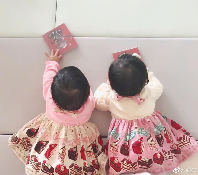 张杰晒双胞胎女儿 张杰谢娜双胞胎女儿照片曝光长得像谁呢?