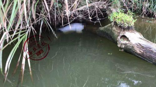 南安溪美失联男子已找到 确认于东安大桥自杀身亡
