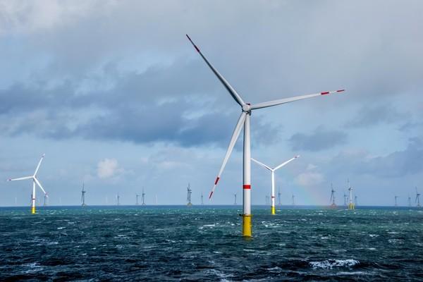 趸购费率过低 台湾离岸风电业者提5点反驳要提高