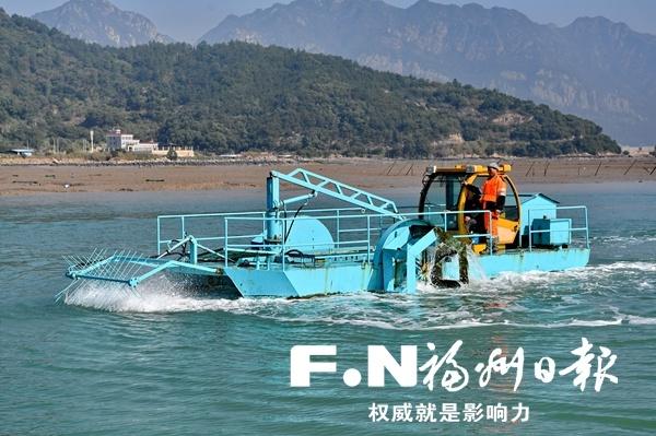罗源探索购买社会服务模式治理海漂垃圾 成效初显