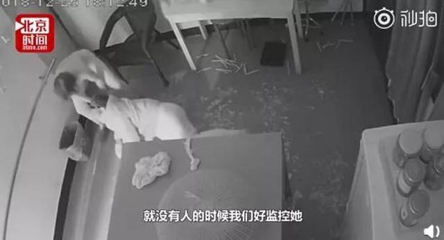 79岁老人遭保姆虐待拖拽 艰难爬到门口喊儿女名字呼救