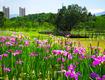 福州晋安:夯实绿色家底 增添生态红利