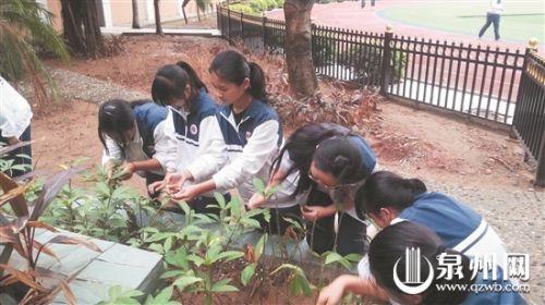 學生托管難題如何解?市民寄望校園課后服務