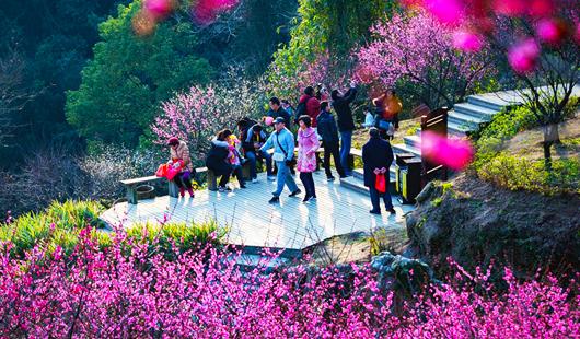 福州森林旅游:城市新生活 发展新动力