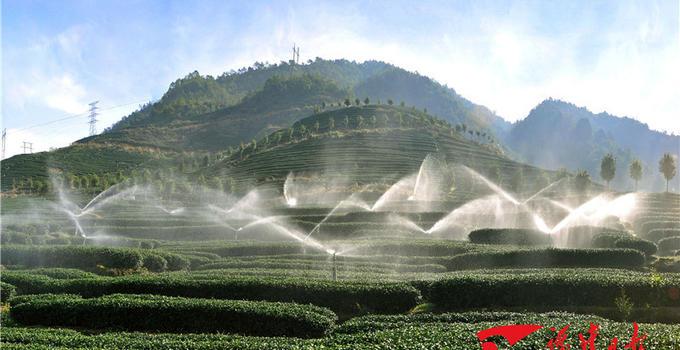 福建累计批办台资农业项目2681个 合同利用台资39.5亿美元
