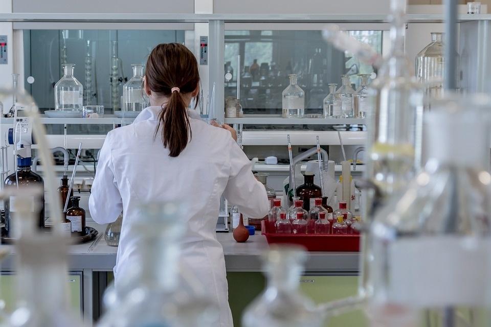 """首次!科学家在实验室中培育出人类血管""""类器官"""""""