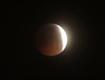 """""""超级血月""""现身天际 媒体:近200年只出现过3次"""