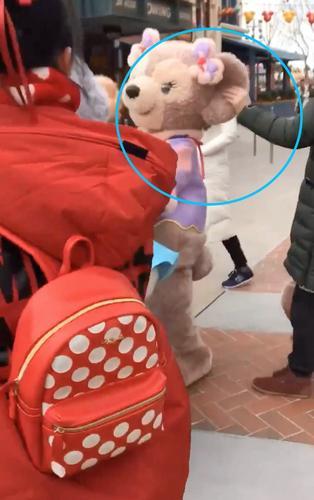 警方介入玫玫被拉耳朵怎么回事 上海迪士尼雪莉玫被抓真相气人
