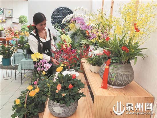 年宵花市迎来热销季 蝴蝶兰供应量提升 价格小幅下调