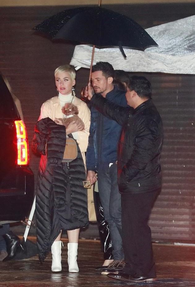 水果姐怀抱爱犬出行照片曝光 冒雨与奥兰多共赴约会之夜太甜了