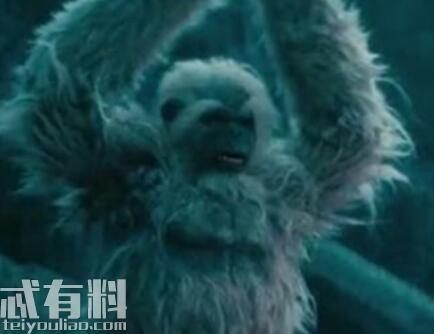 怒晴湘西白猿尸王是怎么来的 陈玉楼打败白猿尸王了吗