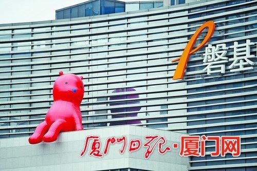 这30米高墙上坐了只400多斤大熊 引发厦门网友热议